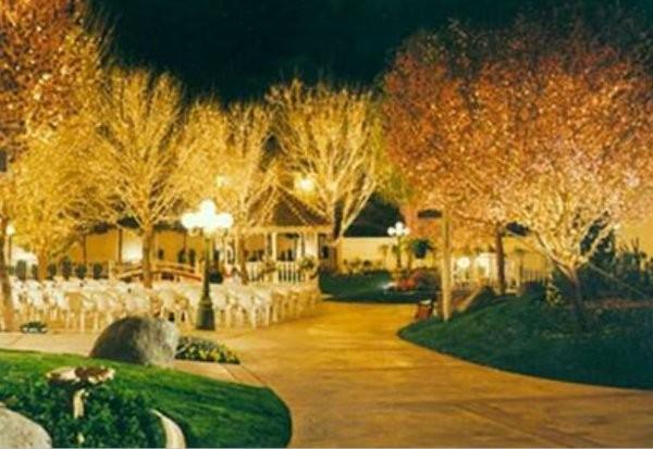 6 Cly Vegas Wedding Venues